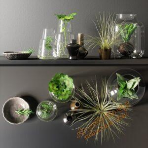 آبجکت گل و گیاهان طبیعی شماره 12