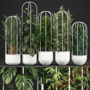آبجکت گل و گیاهان طبیعی برای تری دی مکس شماره 26