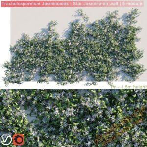 دانلود آبجکت گل و گیاهان طبیعی برای تری دی مکس شماره 30