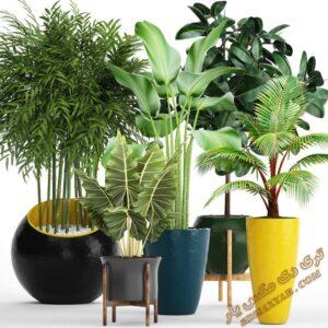 آبجکت گل و گیاهان طبیعی برای تری دی مکس شماره 17