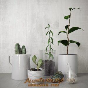 دانلود آبجکت گل و گیاه برای تری دی مکس شماره 42