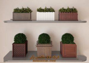 آبجکت گل و گیاهان طبیعی برای تری دی مکس شماره 31