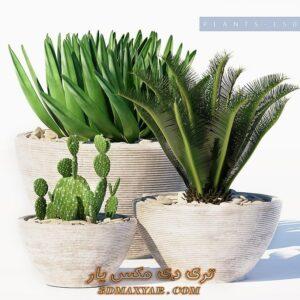 آبجکت گل و گیاه برای تری دی مکس شماره 43