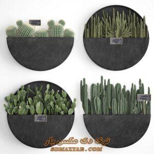 دانلود آبجکت گل و گیاه برای تری دی مکس شماره 46