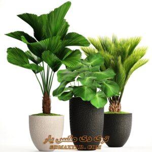 آبجکت گل و گیاه برای تری دی مکس شماره 38